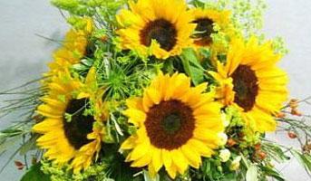 Gewinne einen Blumenstrauss
