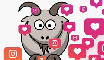 alleschweizerwettbewerbe auf Instagram