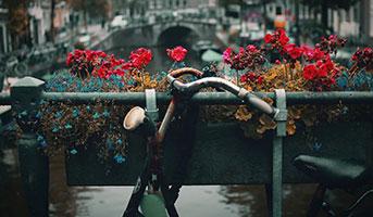 Velo in Amsterdam