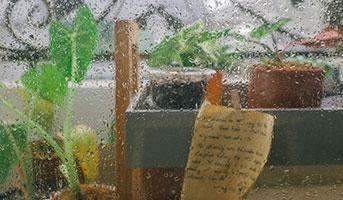Garten Utensilien